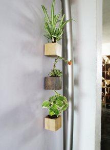 Diy Magnet Planters Mini Succulents Grillo Design