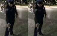 Un policía quiso matar a balazos a un perro, porque éste lo