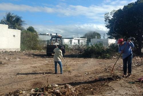 La Comuna de Progreso pide que se refuerce la limpieza en terrenos baldíos