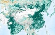 La NASA confirma que la Tierra es más verde que hace 20 años