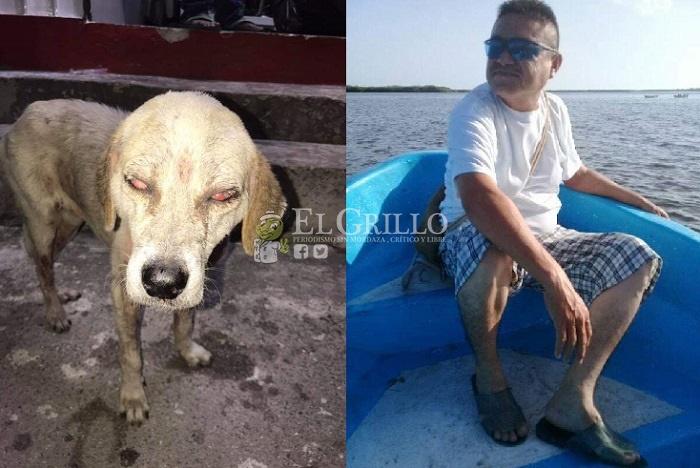 A trancazos, un ebrio deja ciega a una perrita callejera de Valladolid
