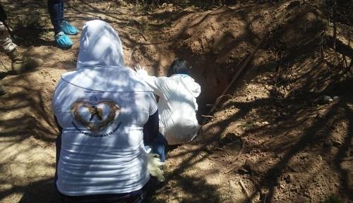Hallan 25 cadáveres en una fosa clandestina, en Sonora