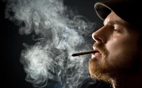 Los hombres que fuman marihuana desarrollan más espermatozoides