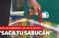 Primero se sustituirán y luego eliminarán las bolsas de plástico