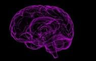 El VIH si afectaría el cerebro, a pesar de los tratamientos