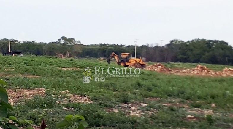 Arrojan toneladas de basura cerca de Cansahcab y el alcalde ni se inmuta