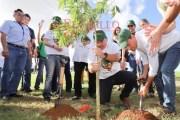 Siembran en Mérida cuatro mil nuevos árboles