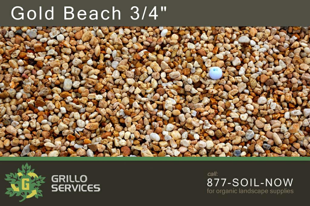 """Gold Beach 3/4"""""""
