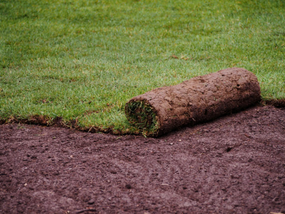 sod for sale, milford sod, sod ct, sod delivery