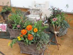 秋の寄せ植え教室