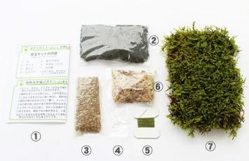 koke-info1