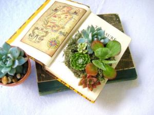 succulent-centerpieces-for-your-recepton-table-8