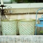植物を自由にレイアウトできるお洒落な木製BOX