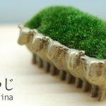 省スペースで育てられる苔。動物の器が可愛い和テイスト盆栽