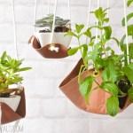 プラントハンガーを簡単に!観葉植物やエアプランツのお洒落な飾り方