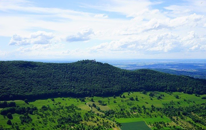 Discuss the applications of remote sensing in Forest Management