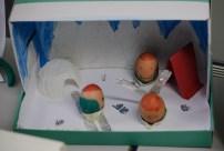 20130328-eggcomp2013-008