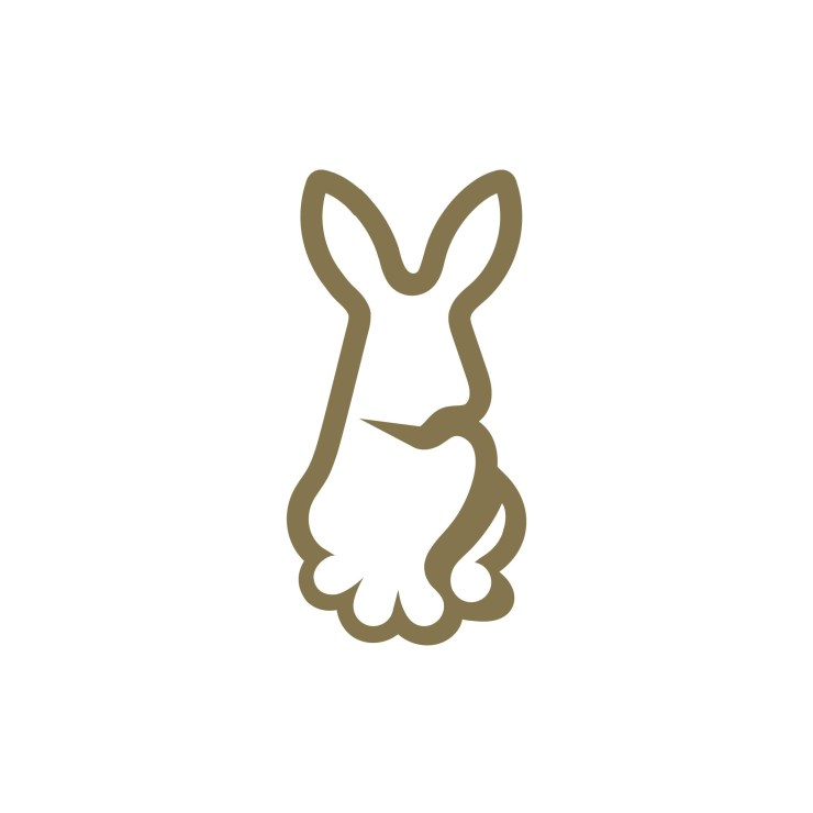 Gold Rabbit Logo Design and Branding Package