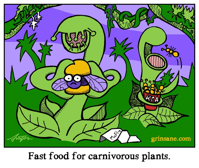 Carnivorous Plants Like Junk Food Too