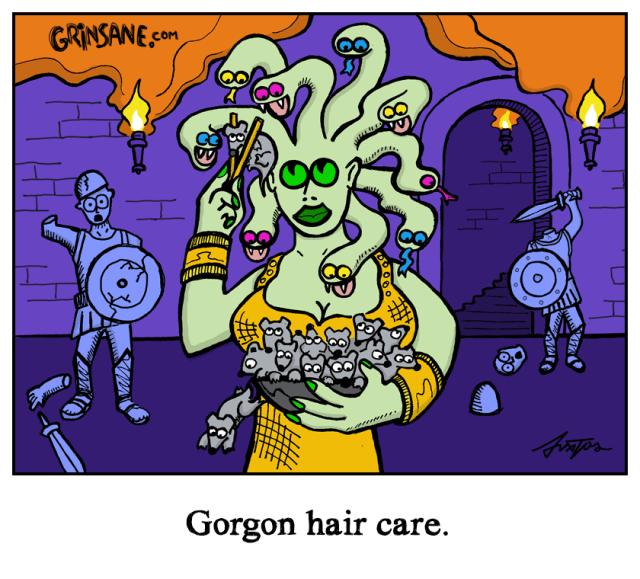 Medusa Gorgon Hair Care Cartoon