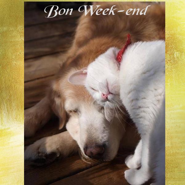 bon week end  Page 2