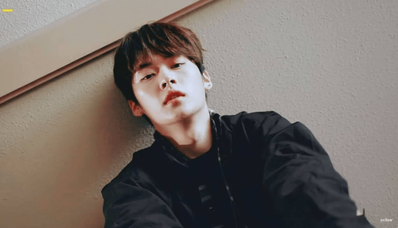 Lee Know (Stray Kids)
