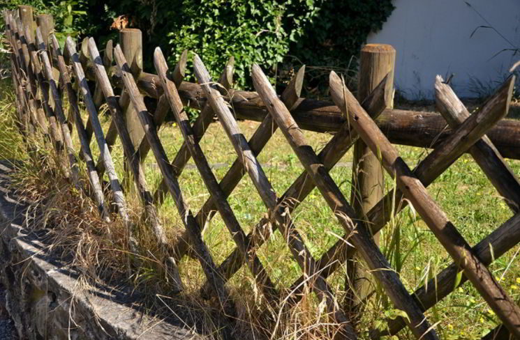 Lattice Fencing for Garden