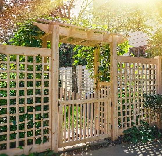 Pergola Gate Fence Design