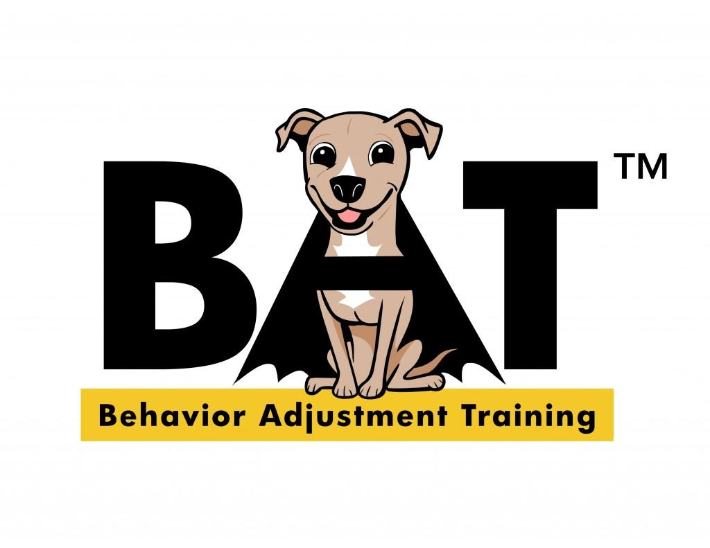 BAT 2 0 Book For Aggression Fear Frustration Grisha Stewart