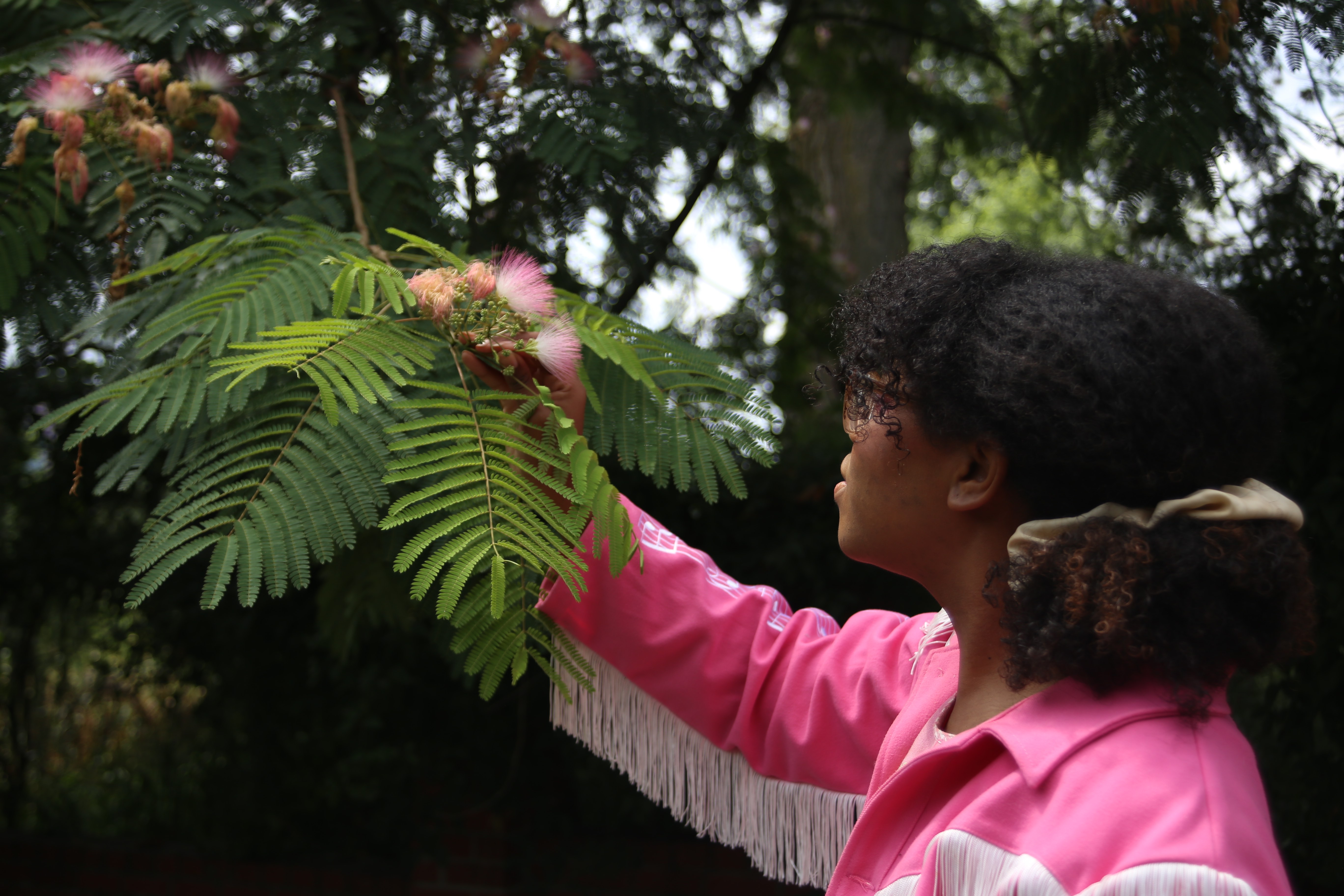 Woman inspecting a tree