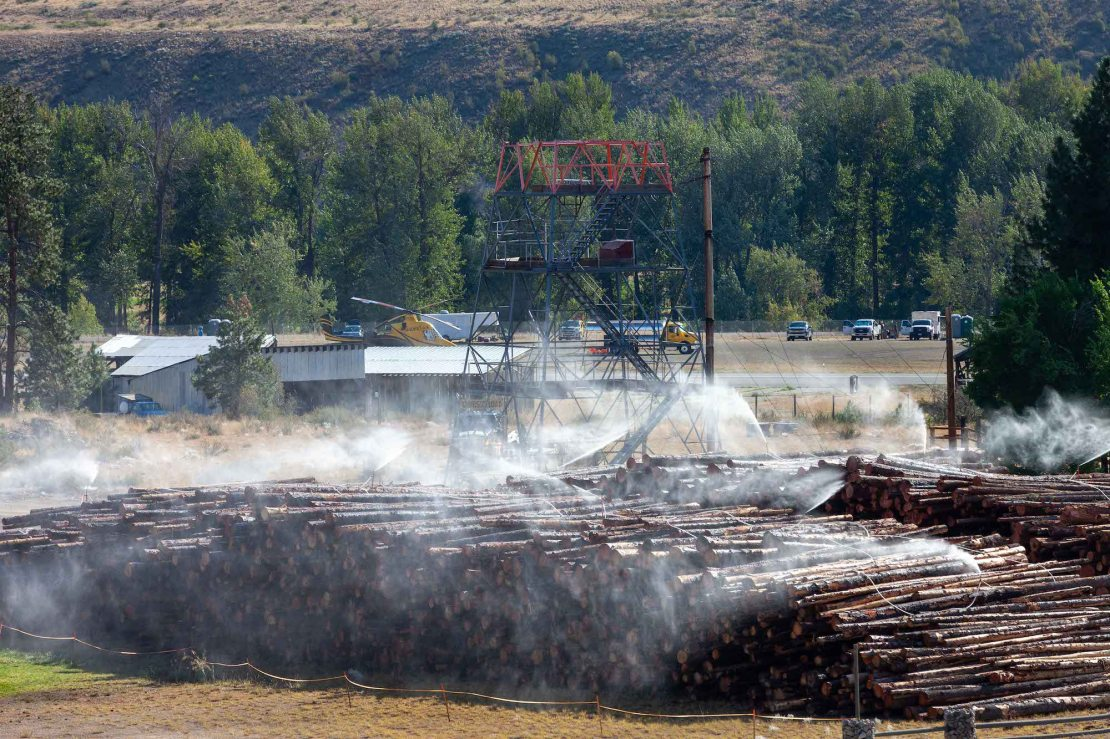 A huge pile of logs rest on dried grass during a hot summer day.