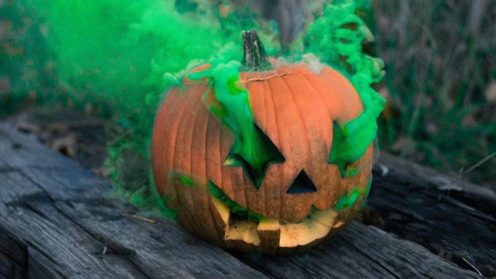 Dragula Halloween Pumpkin