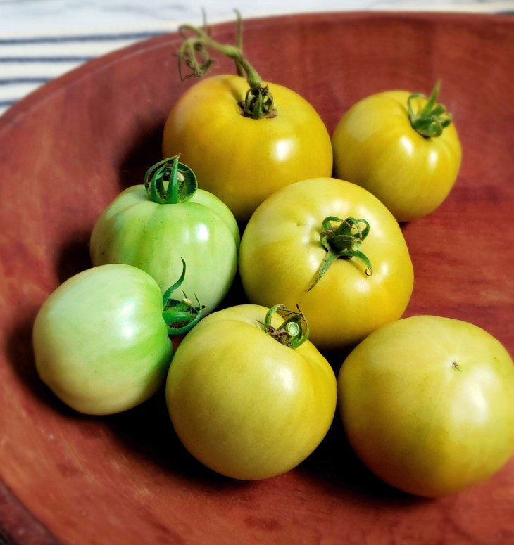 green and slightly yellow tomatoes in a wooden bowl
