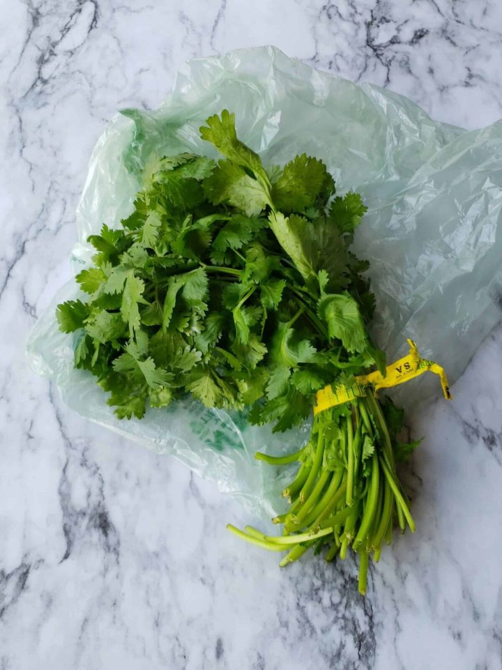 Fresh cilantro straight from the grocery store tied with wire tie back.