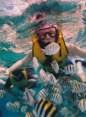Bali Diving & Snorkeling with Griyasari Tours & Travel