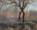 Mato Grosso do Sul recebe apoio para combater incêndios