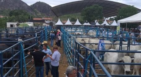 Pró-Genética contribui para melhoria do rebanho bovino do Vale do Jequitinhonha