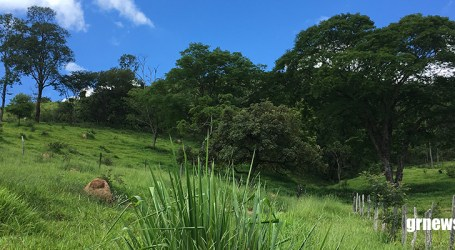 Equipe da Emater-MG atende produtores de forma remota e feirinha está suspensa em Pará de Minas