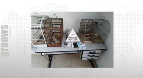 Mãe e filhos detidos suspeitos de tráfico em Leandro Ferreira; pássaros também foram apreendidos na residência