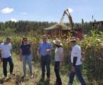 Tecnologias agropecuárias integradas promovem desenvolvimento regional no Centro-Oeste de MG. Assista