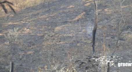 Bombeiros alertam para riscos de queimadas e pedem que população paraminense denuncie