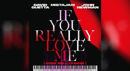 """David Guetta divulga clipe de """"If You Really Love Me (How Will I Know)"""""""