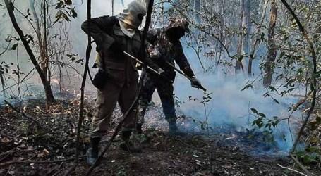Força Nacional atuará no combate a queimadas e incêndios florestais no Amazonas e em Mato Grosso