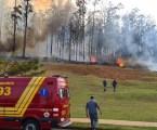 Agentes da Polícia civil e Cenipa investigam acidente aéreo em Piracicaba