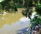 Dia Mundial da Limpeza busca recuperar rios