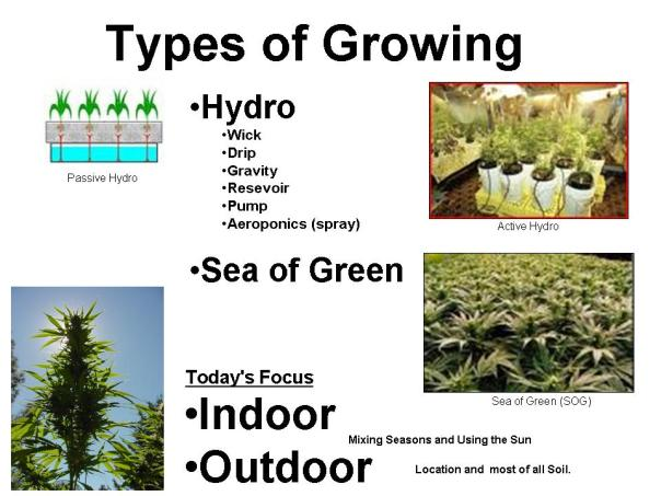Grow Types