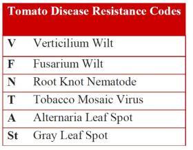 tomato disease chart