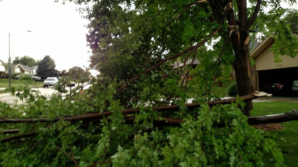 Straight-line wind damage
