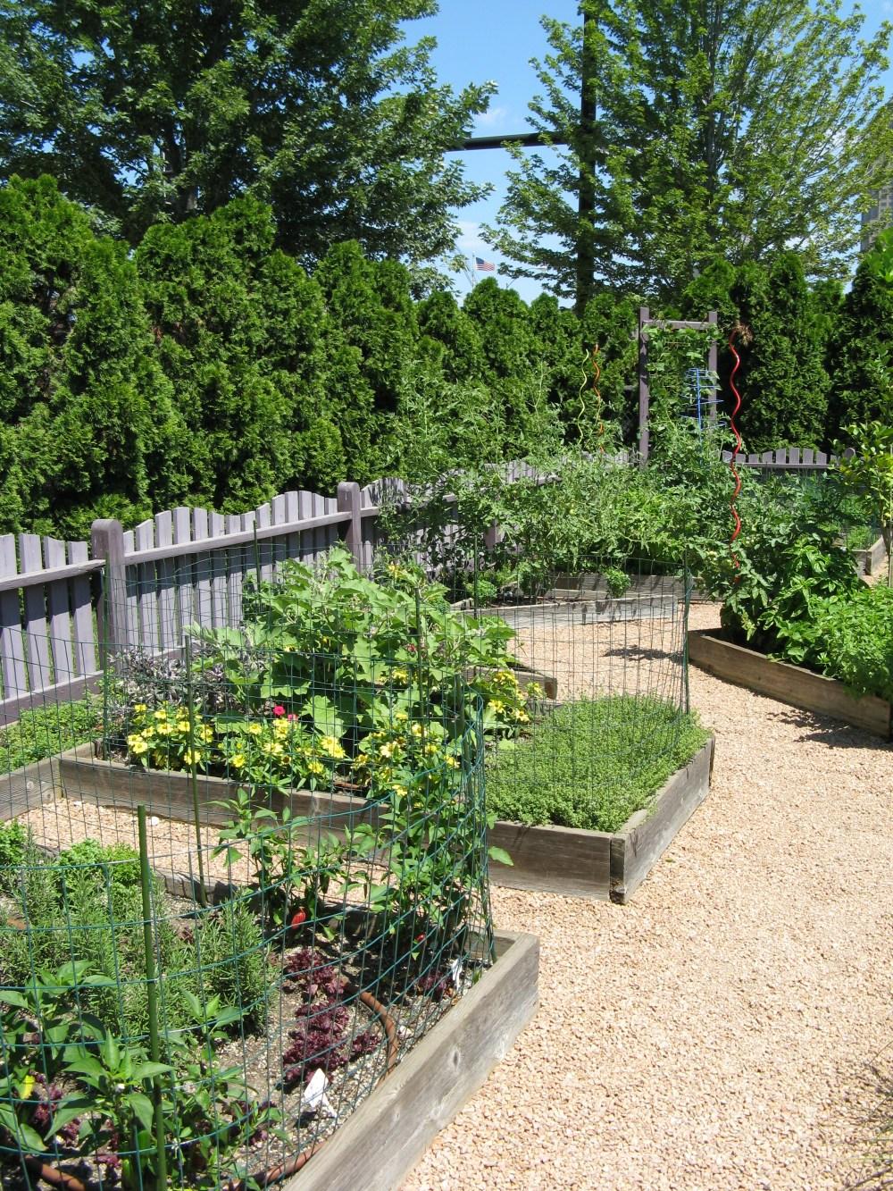 Des Moines IA BHG gardens 8-8-2008 001 (21)