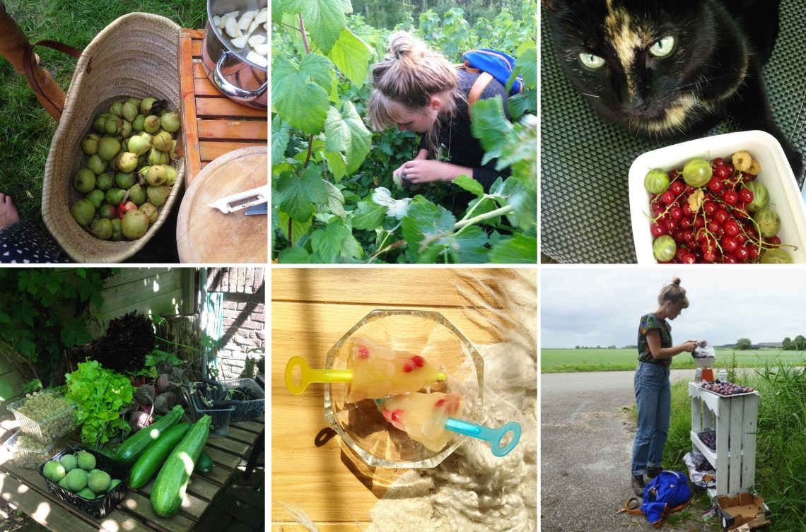 lokaal eten - groene avonturen